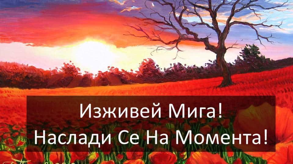Вдъхновяващо видео с картините на художника Дамян Петров