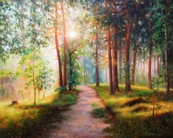 Сутрин в гората