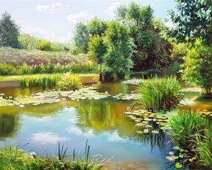Езерото с лилии 1