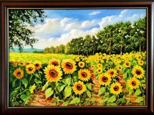 Слънчеви поля